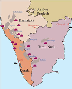 South India Arabica Map